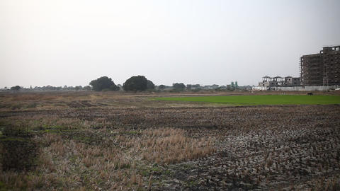 Green field form land in India Footage