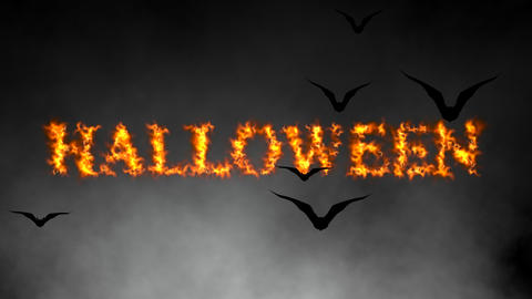 Fiery Halloween text Animation with Spooky Flying Bats and atmospheric smoke Animation