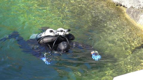 Diver plunges under water. 4K Live Action