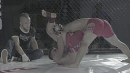 MMA. Fighter fight in a cage Footage
