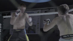 Spectacular MMA fight in the cage between the two athletes Footage