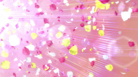 Scatter typeC flowerA bgPink h264 Animation