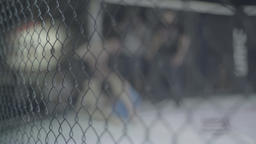 Fight in the cage. Oktagon . MMA Footage