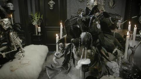 Halloween celebration and skeletons Footage