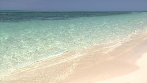 グリーン島 ビデオ