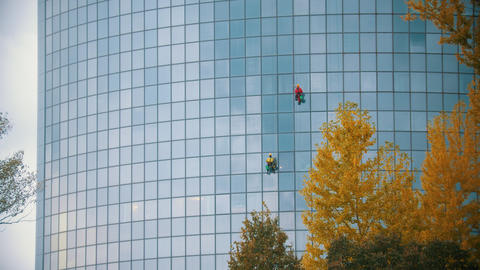 Two men workers cleaning the exterior windows of a skyscraper - industrial Footage
