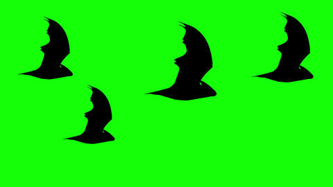 A group of Halloween Flat style Bats flying against green background. Seamless loop background Animation
