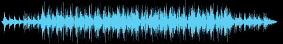 Hip-Hop Electronic Techno Rap Music