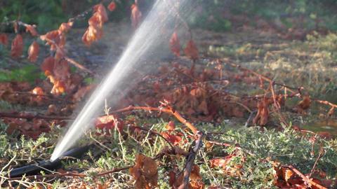 Water leakage in the field Footage