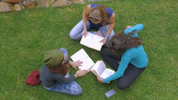 Overhead of three teenage girls studying and reading books on the green grass in Footage