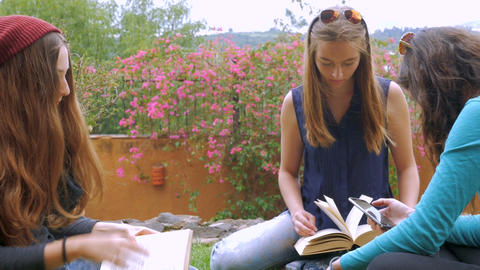 Three teen girls study with books outside sitting in the grass while one reads h Footage