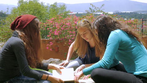 Three young girls with long hair studying with books outside in the grass togeth Footage