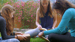 Three young woman read books outside together while sitting on the green grass i Footage