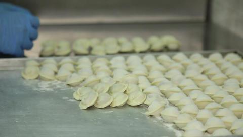 Meat Dumplings Footage