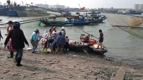 Vietnamese women unloading fish from fishing boat at the dockside, Da Nang, Sout Footage