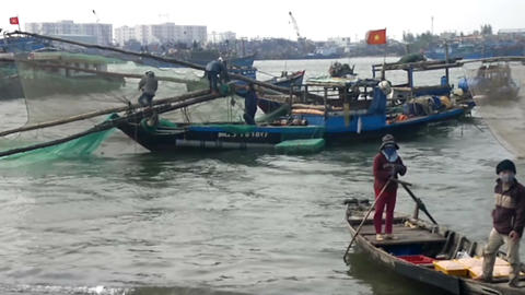 Vietnamese women unloading fish from fishing boat at the dockside, Da Nang, Sout Footage
