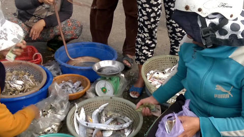 Vietnamese women selling fish at the outskirts of Da Nang, South Vietnam Footage
