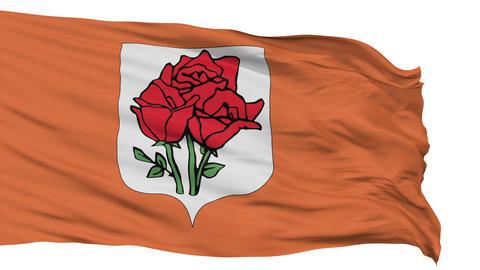 Rose Island Micronation Isolated Waving Flag Animation