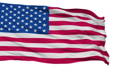 USA Isolated Waving Flag Animation