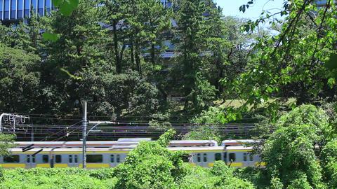 Railway which runs through the green/緑と鉄道 Footage