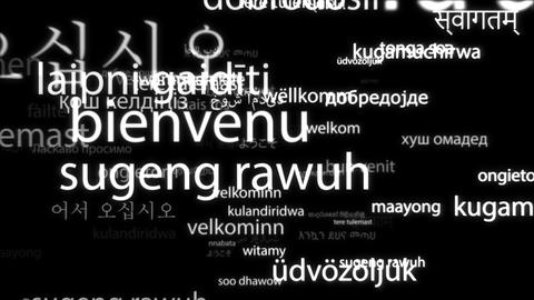 Welcome in all world languages tag cloud Videos animados