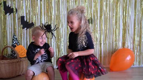 kids scared of Halloween spider and run away screaming. halloween joke party. 4K GIF