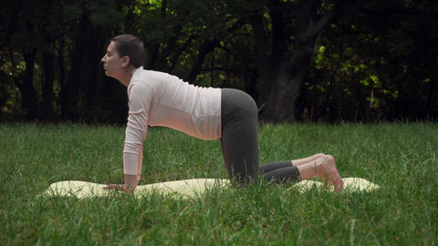 A pregnant woman doing yoga in the park on the carpet, standing on her knees in Live Action