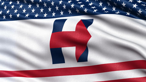 3D illustration of Hillary Clinton flag waving. Seamless loop Animation