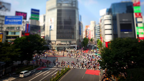 Time Lapse of the famous Shibuya Crossing in Tokyo Japan Footage