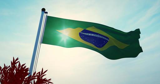 Brazilian Flag Waving On A Flagpole For Brazil National Celebration - 30fps 4k Video Animation