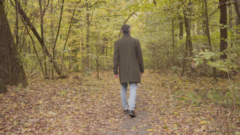 Back view of an adult Caucasian man walking away in the forest. Guy in casual Live Action