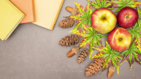Autumn concept - books, leaves, pine cones and apples disappearing from the table - Stop motion CG動画