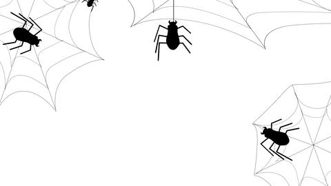 Halloween Spider and Web animation on a white background.... Stock Video Footage