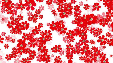 4 K Flying Flowers 11 Stock Video Footage