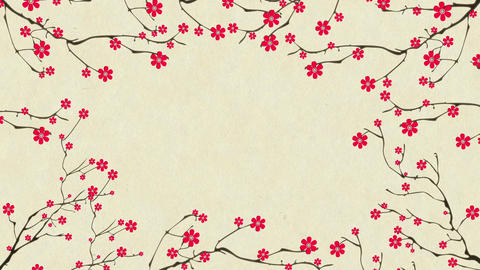 Cherry Blossoming 2 Stock Video Footage