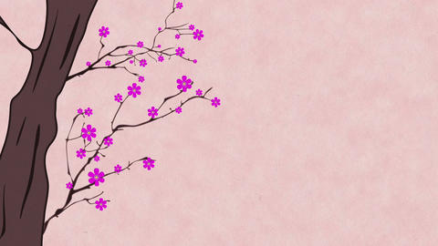 Cherry Blossoming 6 Animation