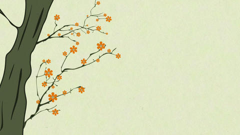 Cherry Blossoming 8 Animation