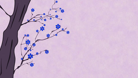 Cherry Blossoming 10 Animation