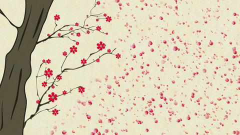 Cherry Blossoming 12 Animation