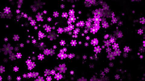 Flying Flowers 15 Stock Video Footage
