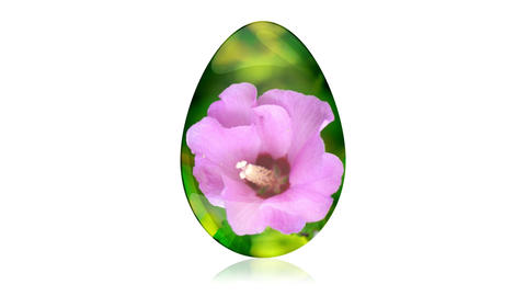 Glass Easter Egg with Flower Stock Video Footage
