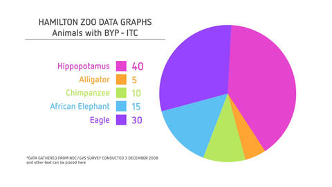 Corporate Pie Chart After Effects Template