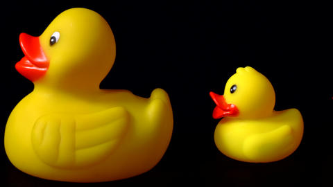 Yellow Rubber Duck Parade On Black With Blue Duck At End Footage