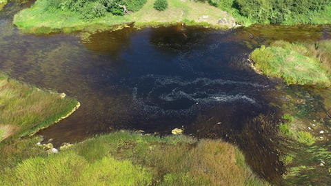 Weak drained summer river stream, aerial view Footage