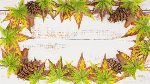Stop motion animation of autumnal frame of leaves and pine cones Animation