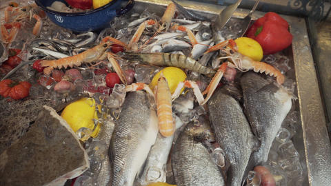 Mix of seafood: various fish, shellfish and vegetables in the middle of an ice Live Action