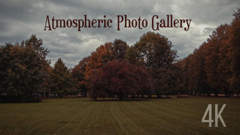 Atmospheric Photo Gallery 4K After Effects Template