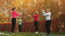 Female group practicing yoga exercise in autumn park. Relaxer woman training Footage