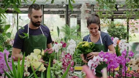 Teamwork With Happy Co-workers At Work In Florist Shop Footage