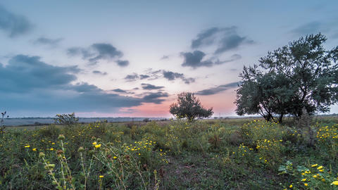 4K timelapse of sunset over the meadow. Timelapse of meadows and sunset in the Live Action